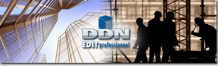 ddn edit professionel